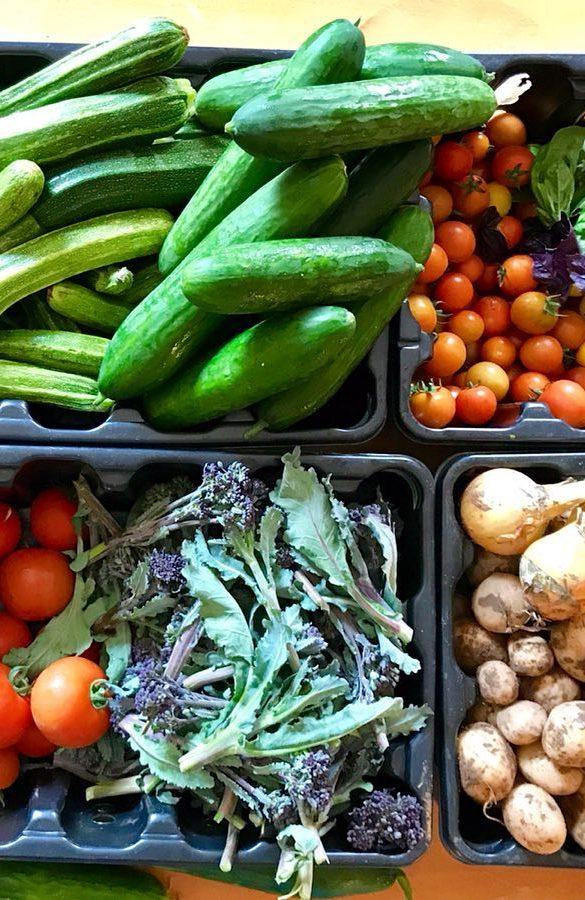 Glencraig Fresh Produce